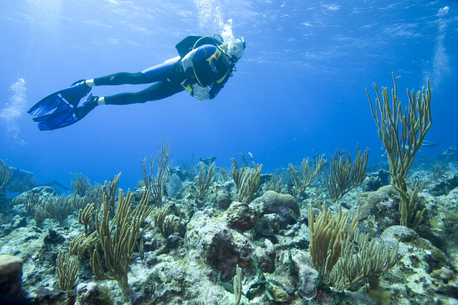 Combinaisons de plongée Aqualung